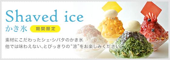 Jiashibao SKIRT レディース レディース B075WG68SN B075WG68SN Jiashibao Medium, アサバチョウ:83c856e1 --- amlakpaveh.ir